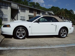 Another kfunct 2001 Ford Mustang post... - 13374661