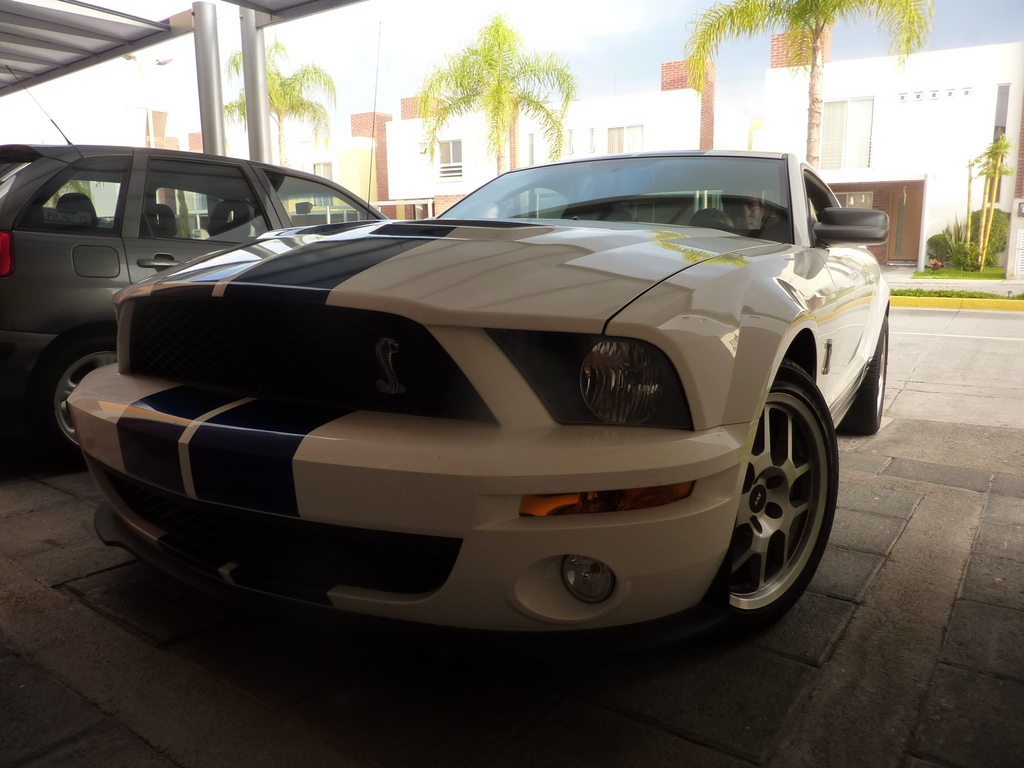Another elgatsz 2009 Shelby GT500 post... - 13586480