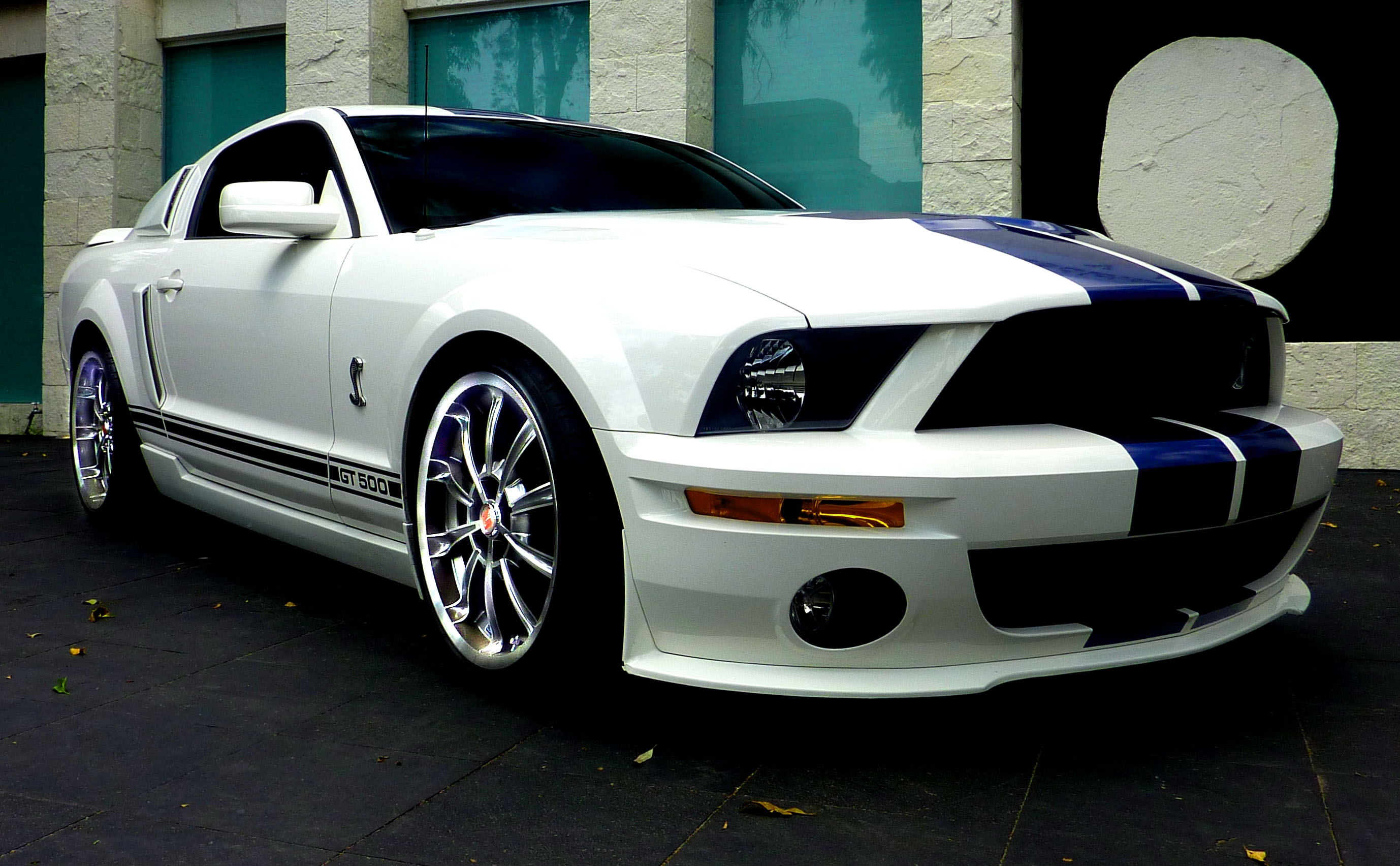 elgatsz 2009 shelby gt500 specs photos modification info at cardomain. Black Bedroom Furniture Sets. Home Design Ideas
