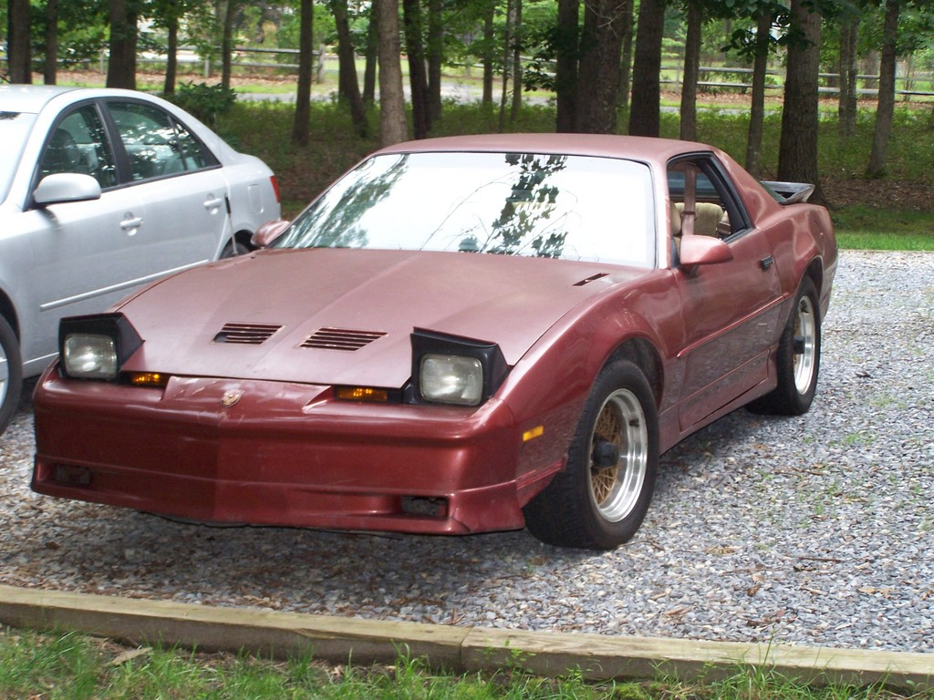 Another Birdfan90nw 1989 Pontiac Trans Am post... - 13581313