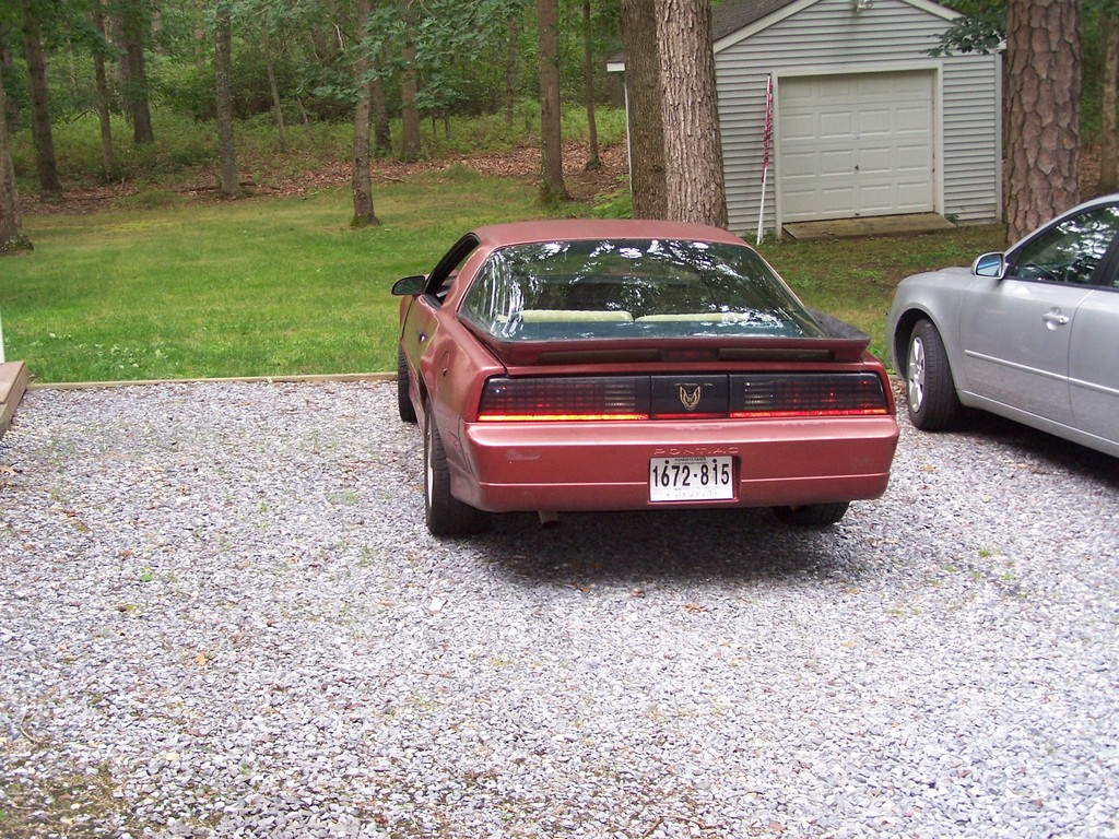 Another Birdfan90nw 1989 Pontiac Trans Am post... - 13581323