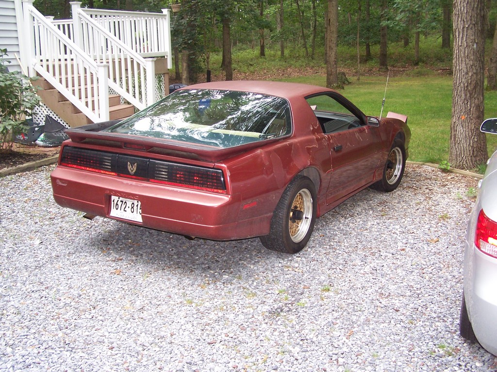 Another Birdfan90nw 1989 Pontiac Trans Am post... - 13581324