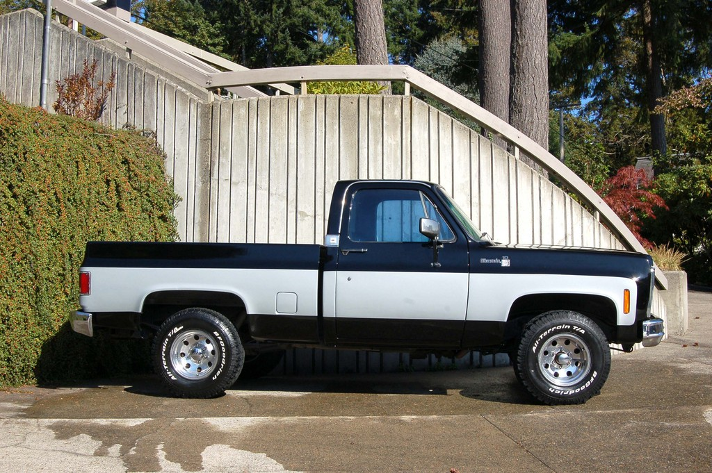 sbarer 1979 Chevrolet C/K Pick-Up 13581268