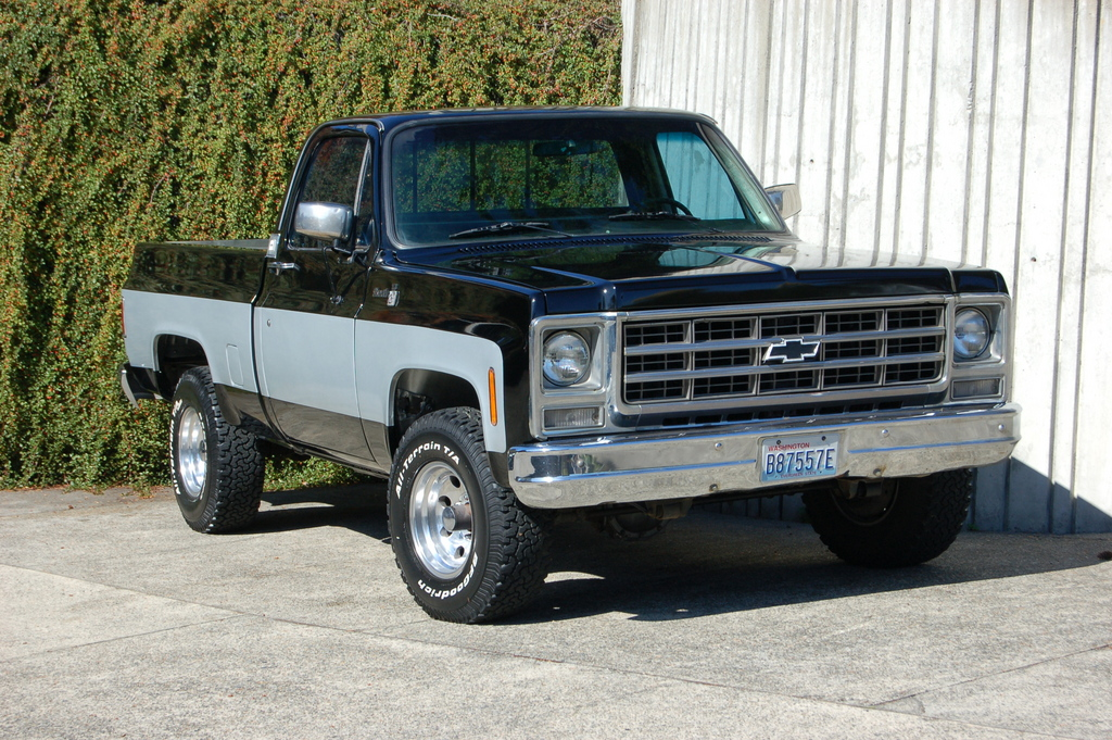 sbarer 1979 Chevrolet C/K Pick-Up Specs, Photos ...