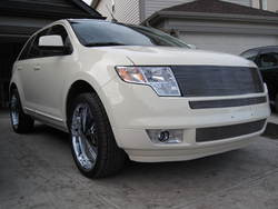 AlzTorrent 2007 Ford Edge