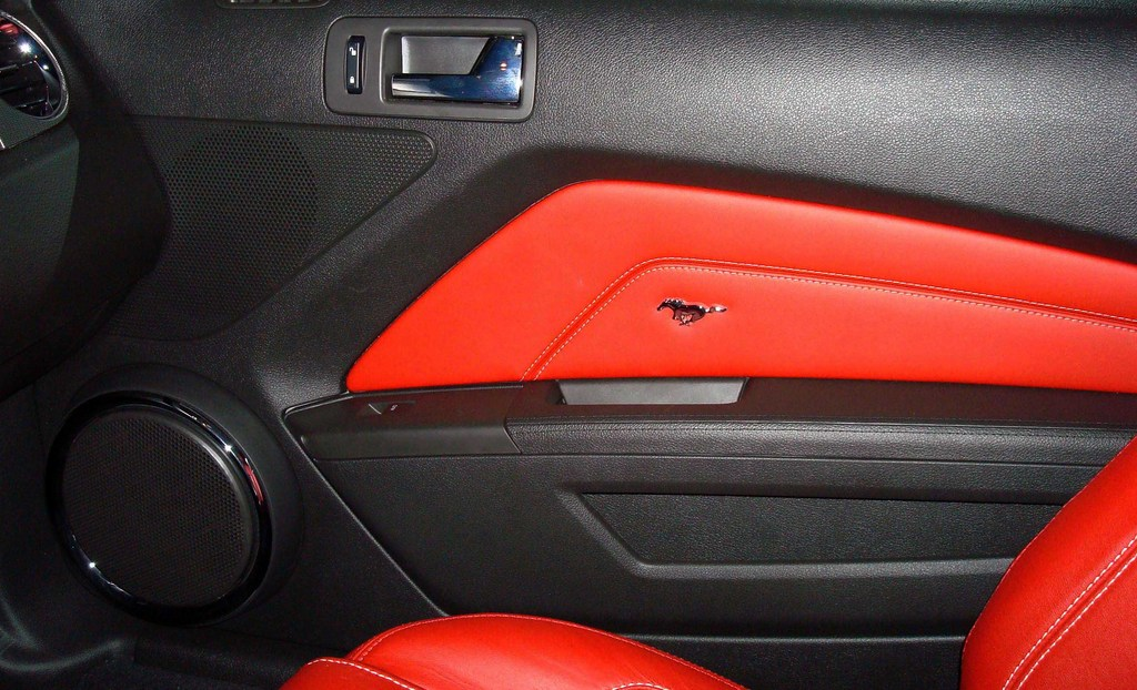 Another panoptic 2010 Ford Mustang post... - 13585940
