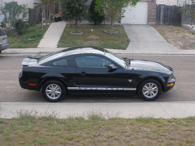 Another X-STANG 2009 Ford Mustang post... - 13452882