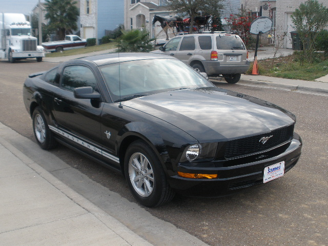 Another X-STANG 2009 Ford Mustang post... - 13452883