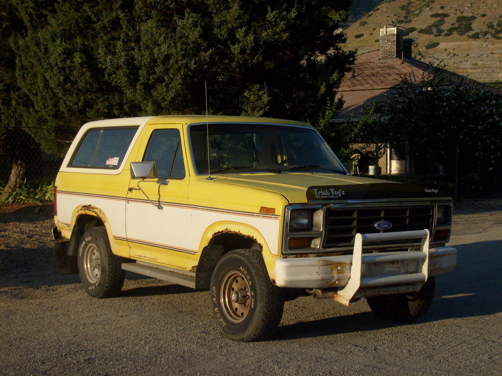 paw88 1982 ford bronco specs photos modification info at. Black Bedroom Furniture Sets. Home Design Ideas