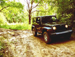 GSH1984s 2009 Jeep Wrangler