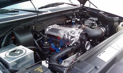 Built-BlownLs 2002 Ford F150 Regular Cab