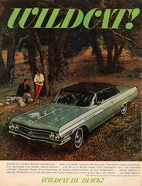 Another Dadsoyousay 1963 Buick Wildcat post... - 13614442