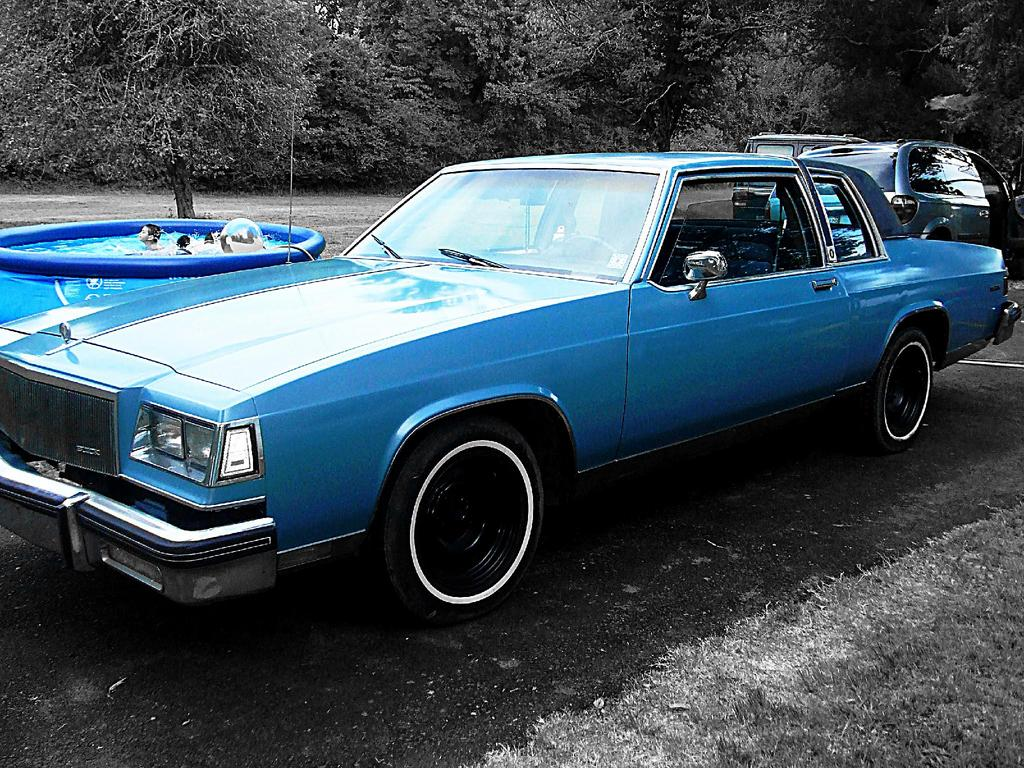 Large on 1981 Buick Lesabre