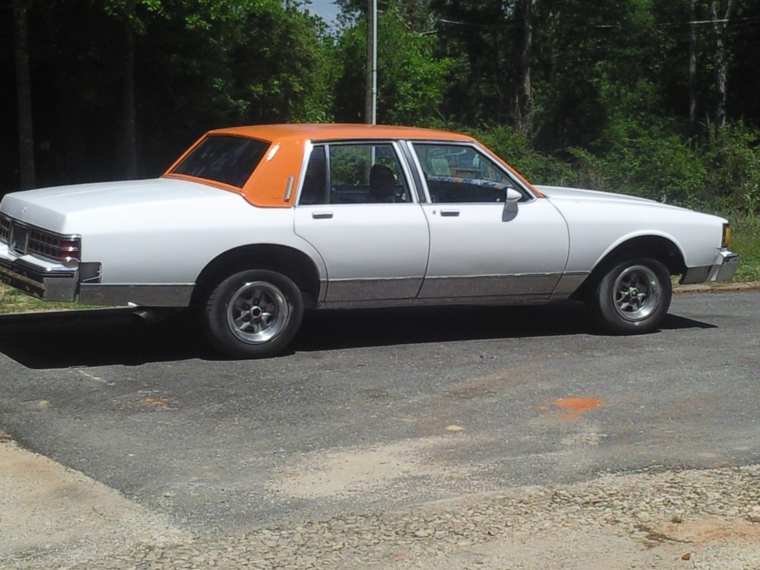 Another deltaboi 1985 Pontiac Parisienne post... - 13679956