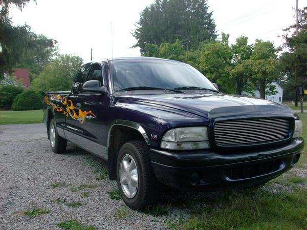 Erfquake 1999 Dodge Dakota Regular Cab & Chassis 13685374