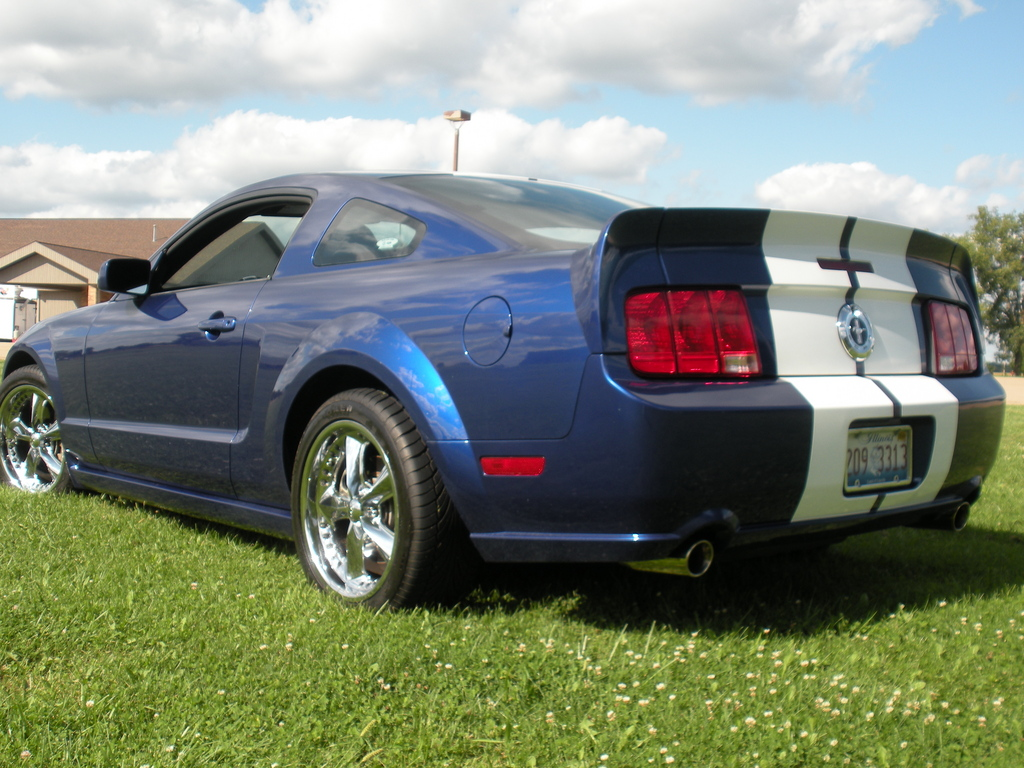 Another crazygreengeo 2005 Ford Mustang post... - 13699505