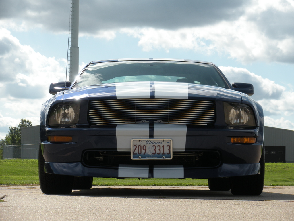 Another crazygreengeo 2005 Ford Mustang post... - 13699510