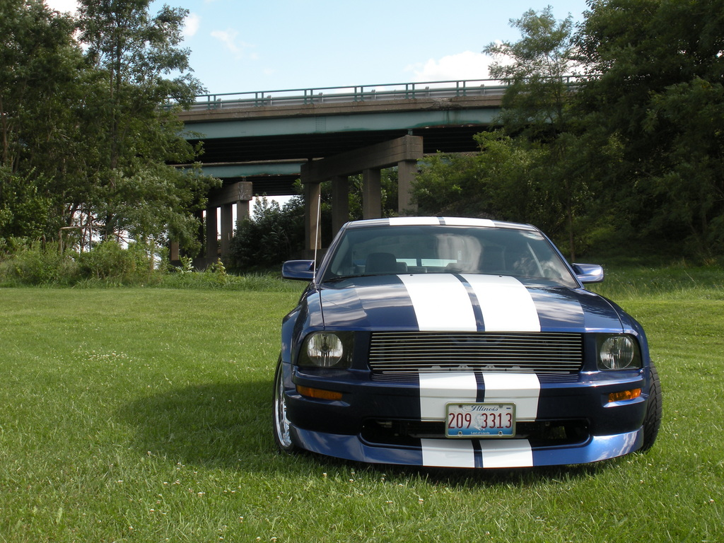 Another crazygreengeo 2005 Ford Mustang post... - 13699514
