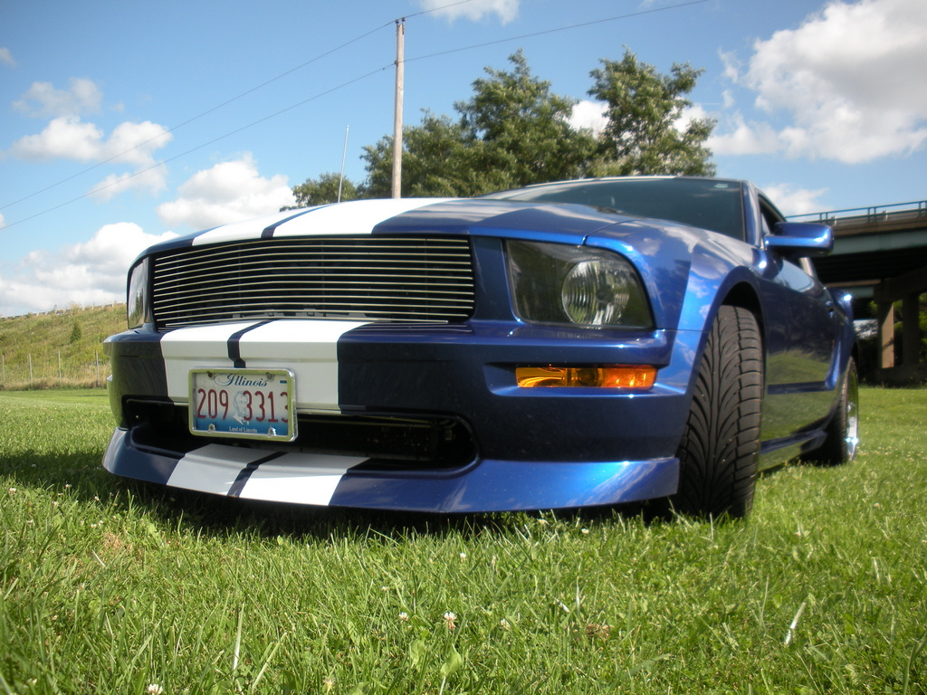 Another crazygreengeo 2005 Ford Mustang post... - 13699519