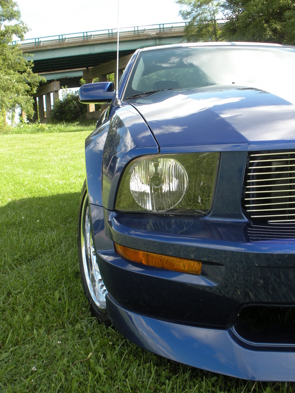 Another crazygreengeo 2005 Ford Mustang post... - 13699520