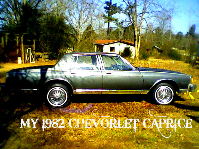 Another ChevyChamp 1982 Chevrolet Caprice post... - 13434333