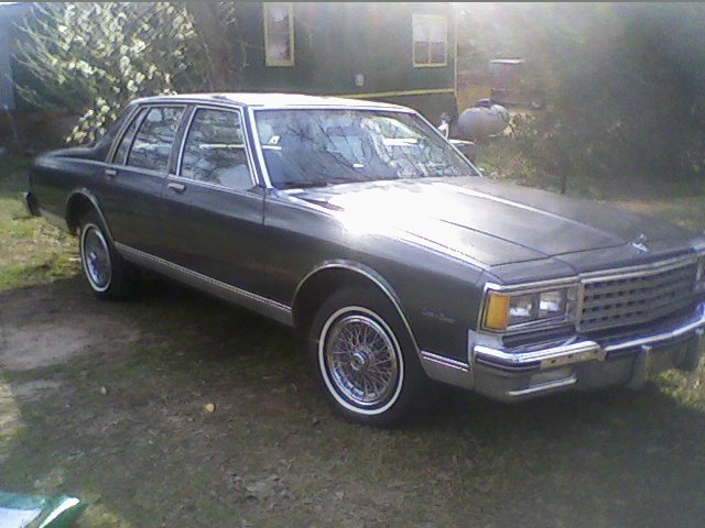 Another ChevyChamp 1982 Chevrolet Caprice post... - 13434334