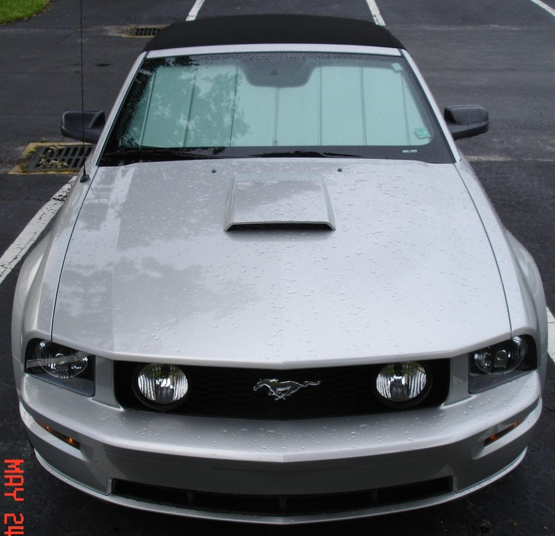 Another StangGT06 2009 Ford Mustang post... - 13717714
