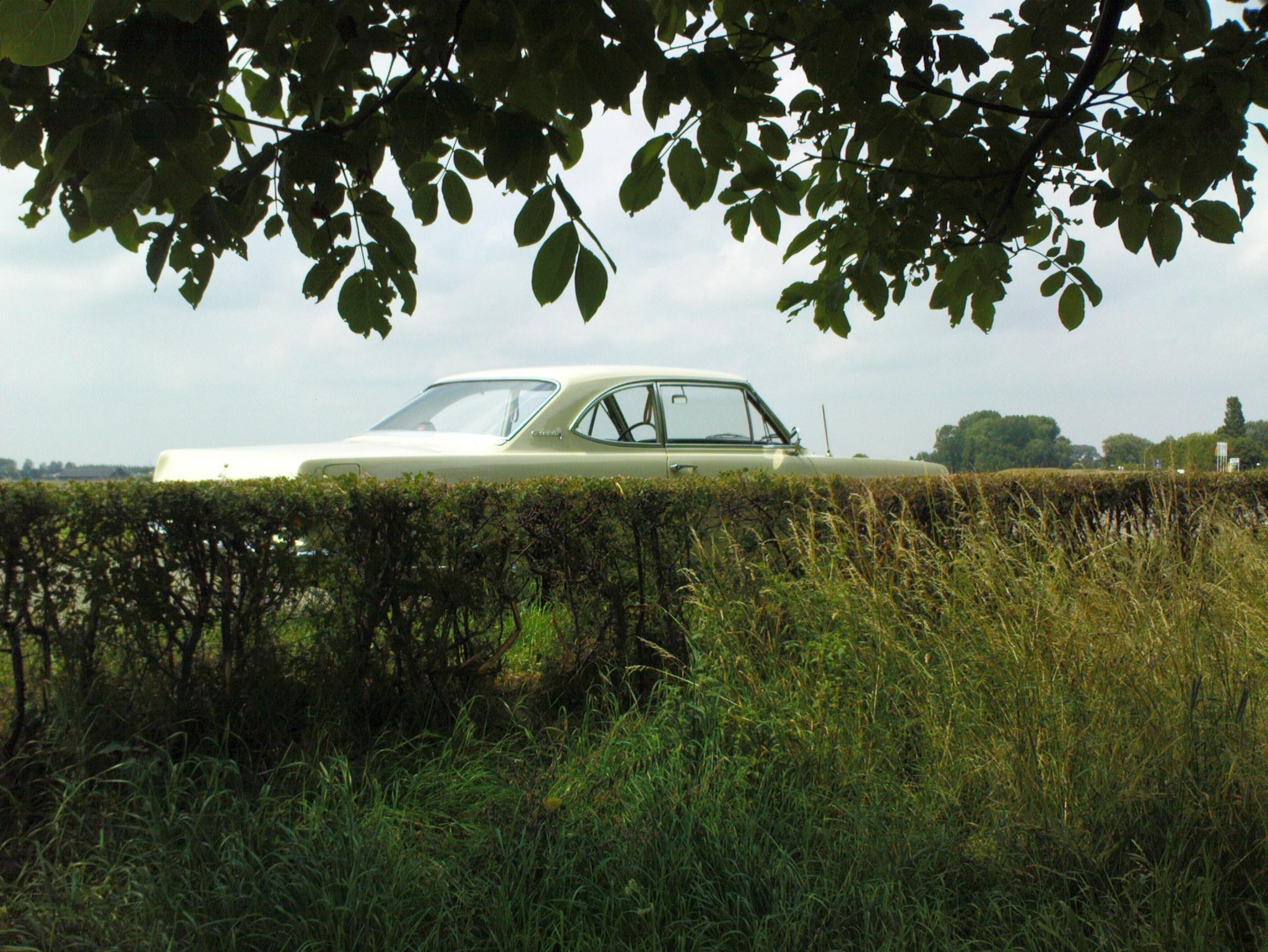 Another hakkelaar 1964 Opel Rekord post... - 13752064