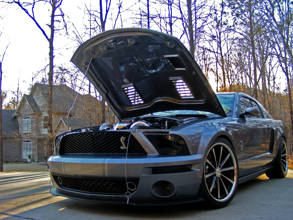 Another CutterWolf 2006 Ford Mustang post... - 13755988