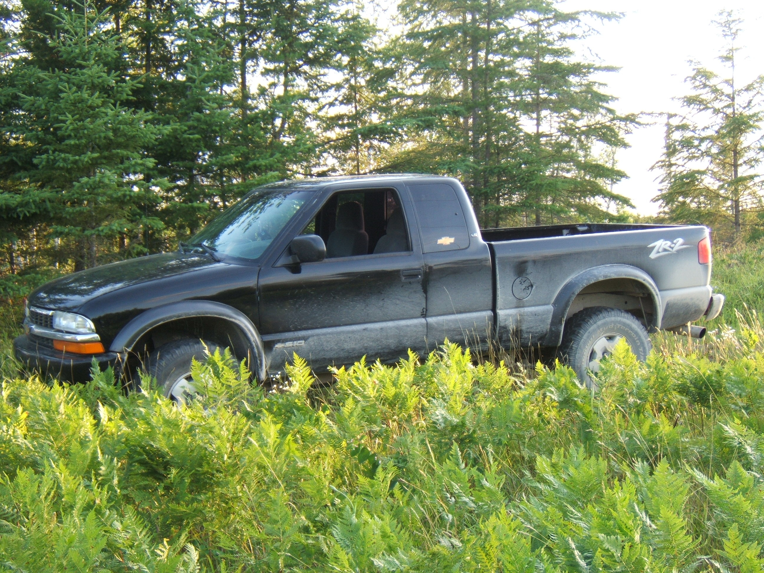Another Chevyman2009 2001 Chevrolet S10 Extended Cab post... - 13758255