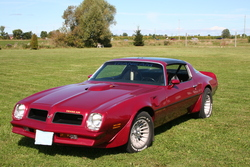 NoFuzzyDices 1976 Pontiac Trans Am