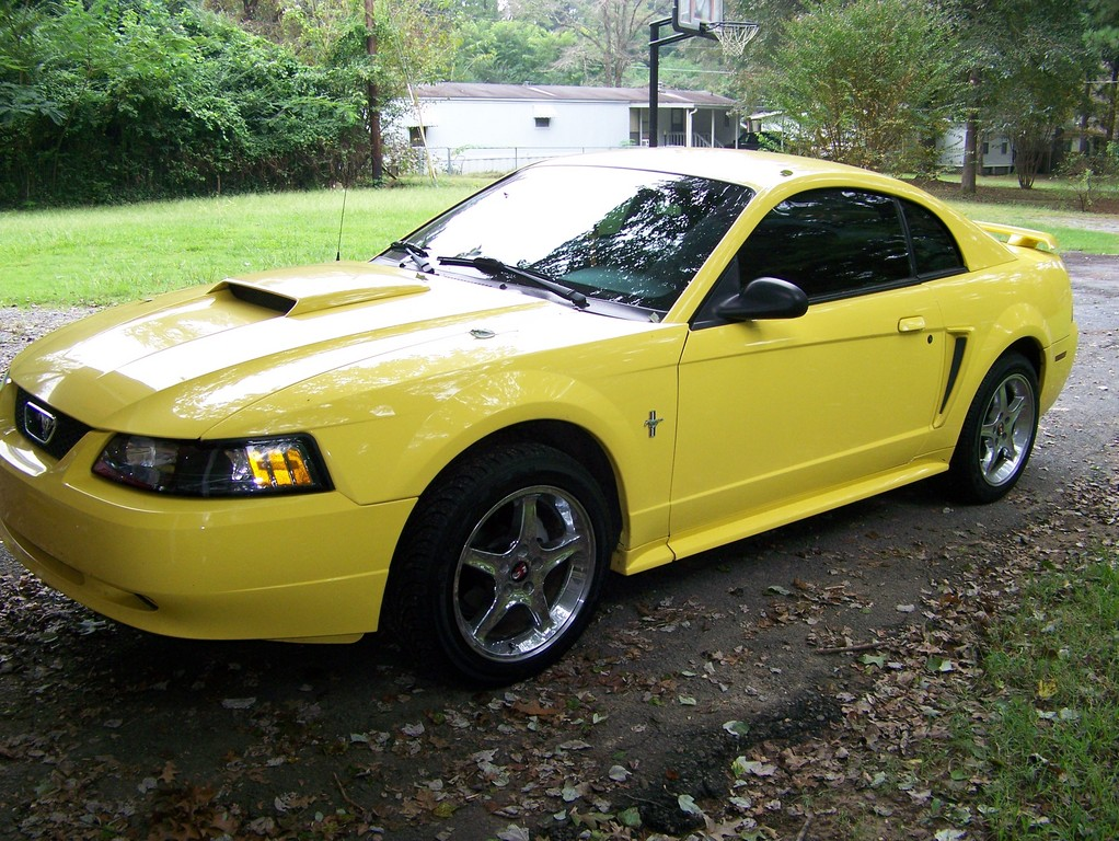 Another MistyMay03 2003 Ford Mustang post... - 13770337