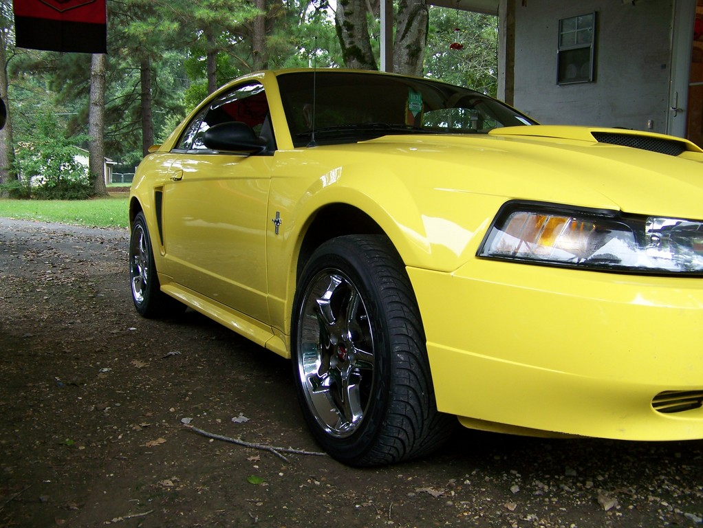 Another MistyMay03 2003 Ford Mustang post... - 13770340