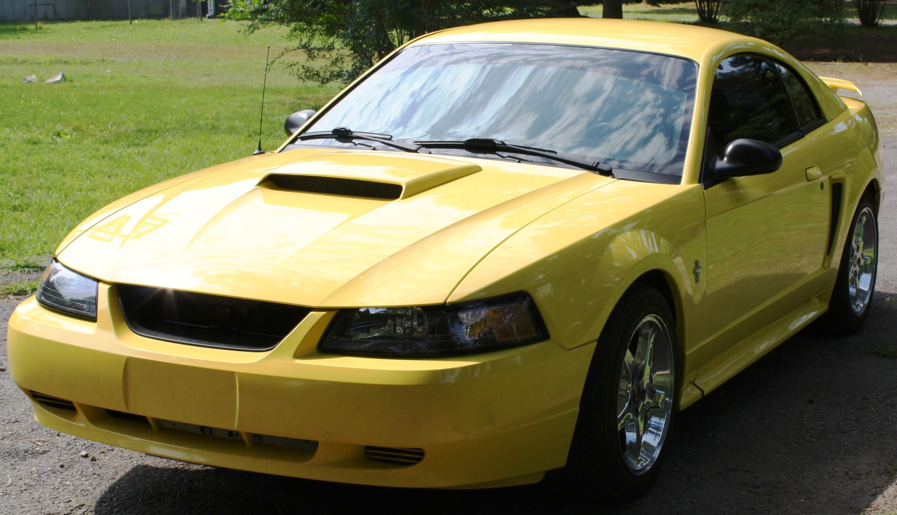 Another MistyMay03 2003 Ford Mustang post... - 13770378
