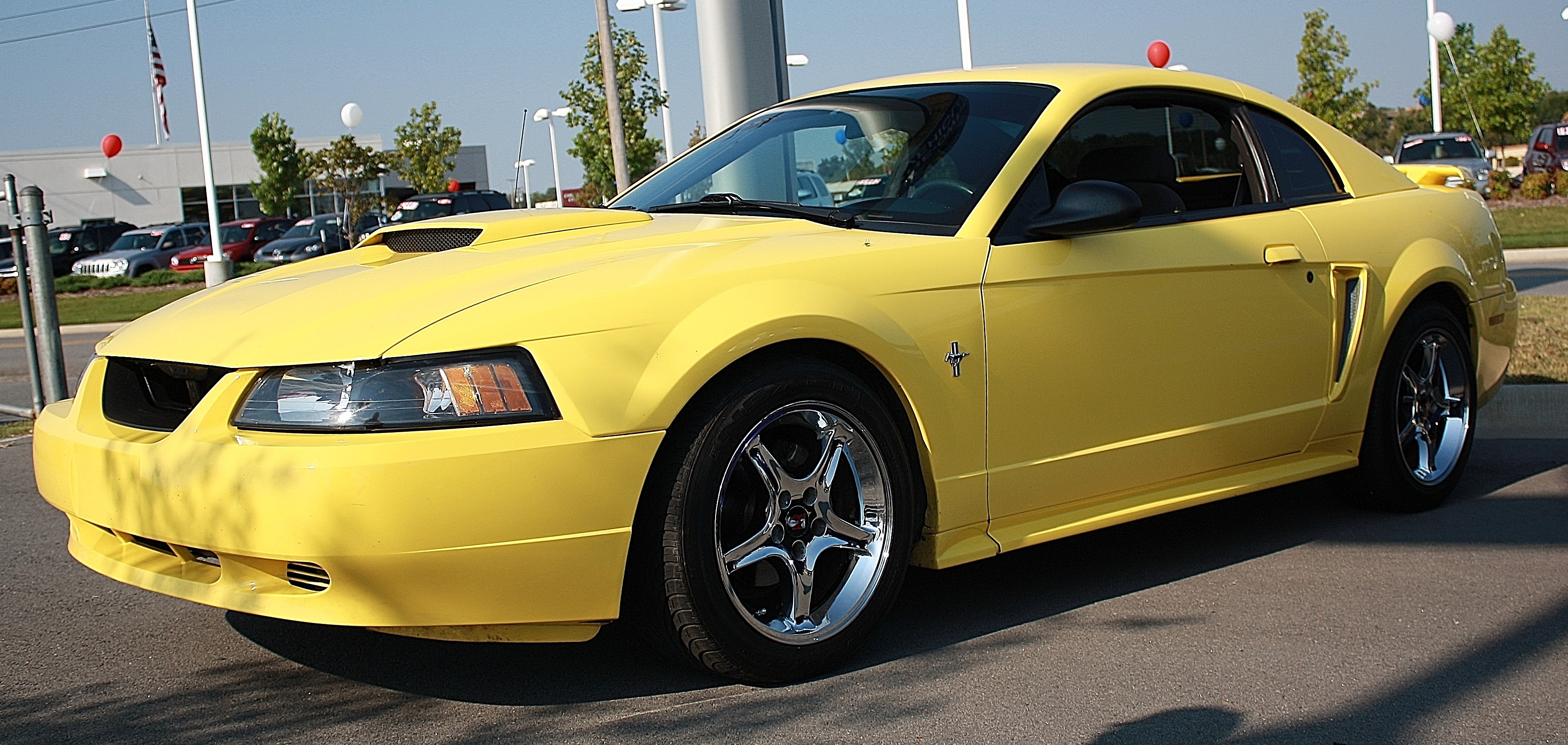 Another MistyMay03 2003 Ford Mustang post... - 13770379
