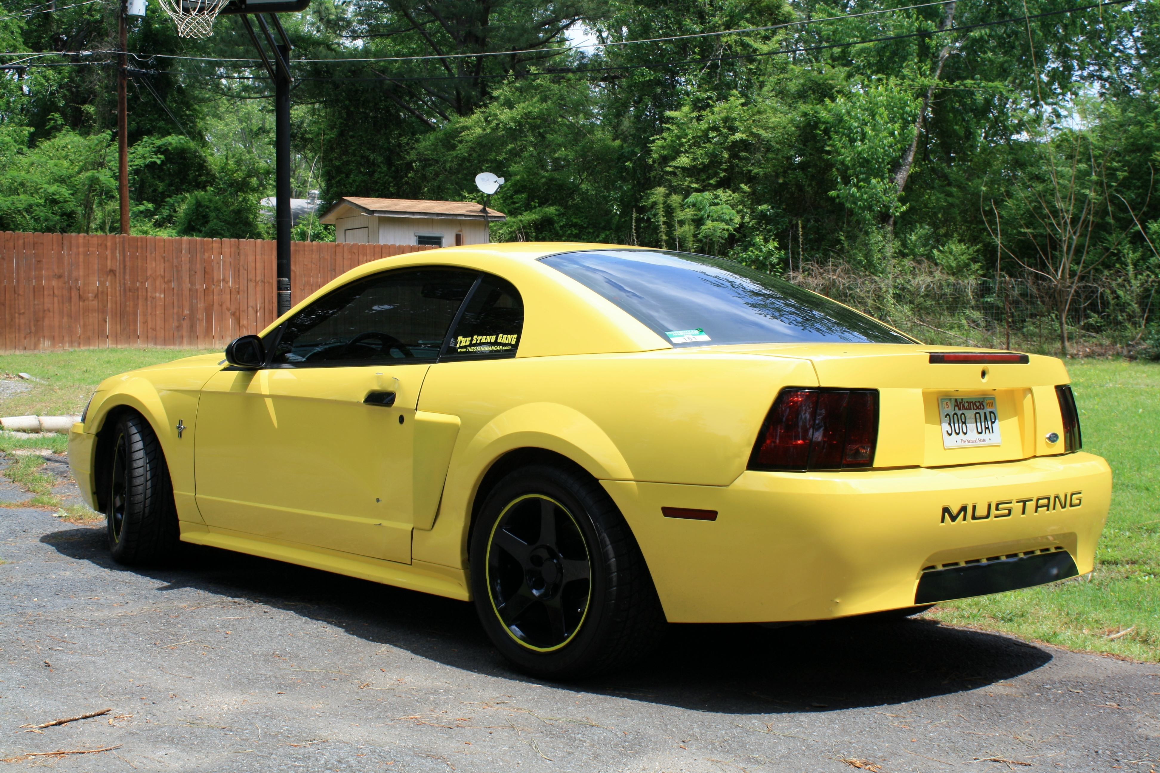 Another MistyMay03 2003 Ford Mustang post... - 13770386