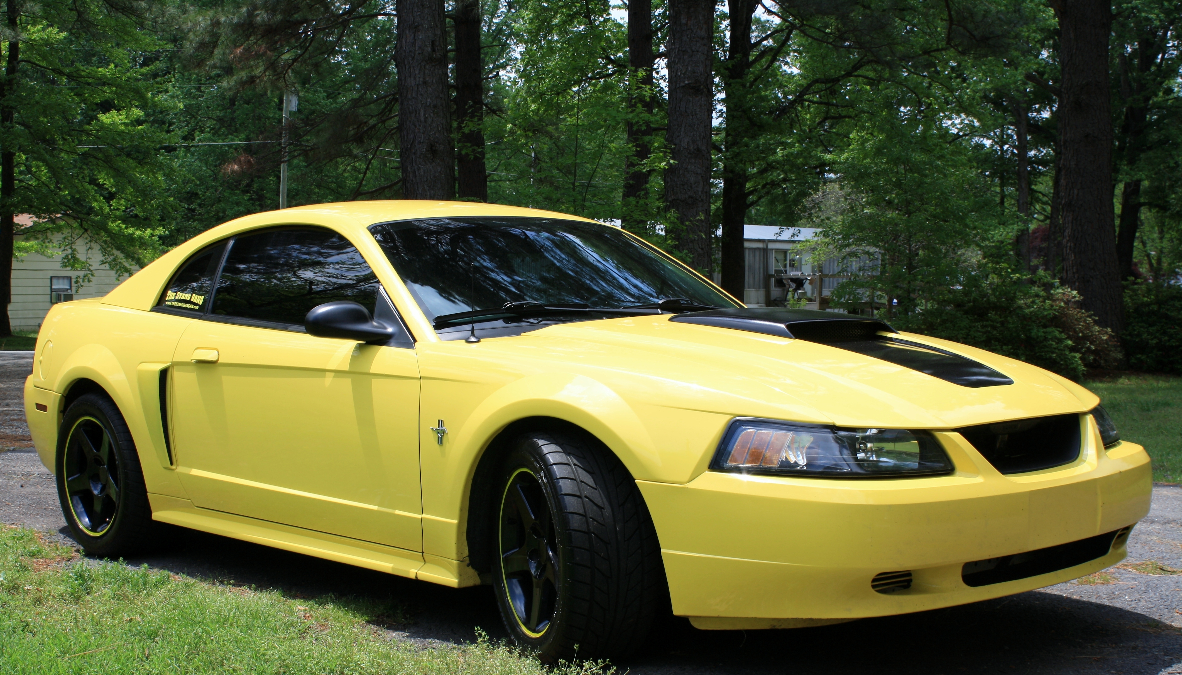 Another MistyMay03 2003 Ford Mustang post... - 13770388