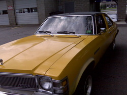 lachciks 1977 Buick Skylark