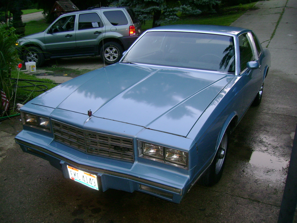 hawaii5point0 1982 chevrolet monte carlo specs photos modification info at cardomain. Black Bedroom Furniture Sets. Home Design Ideas