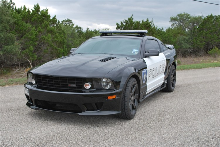 Lampoon 2006 Ford Mustang 13795198
