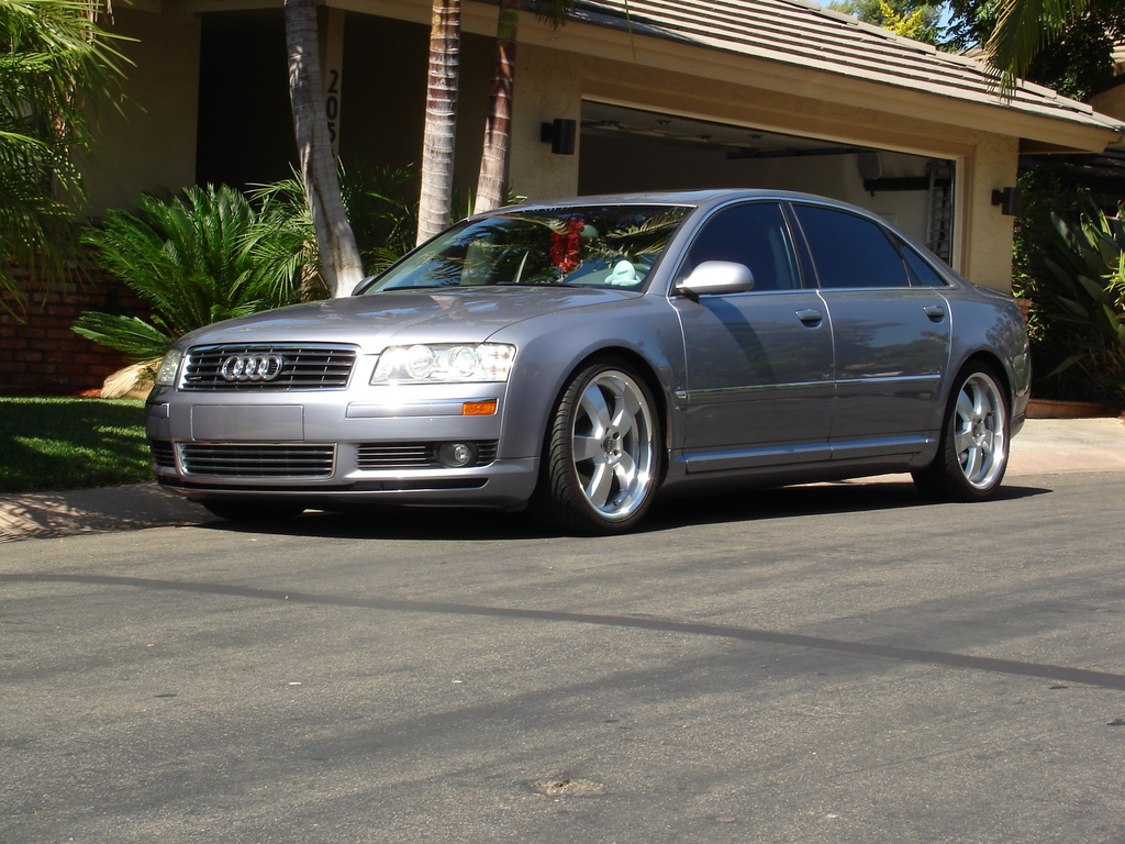 Ford Of Escondido >> welsh1985 2005 Audi A8 Specs, Photos, Modification Info at CarDomain