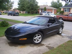 firebirdman24s 1995 Pontiac Firebird