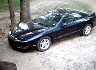 firebirdmuscle 1998 Pontiac Firebird 13803521