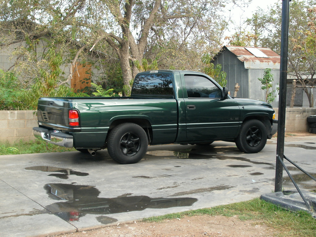 m 1500ram 1998 dodge ram 1500 regular cab specs photos. Black Bedroom Furniture Sets. Home Design Ideas