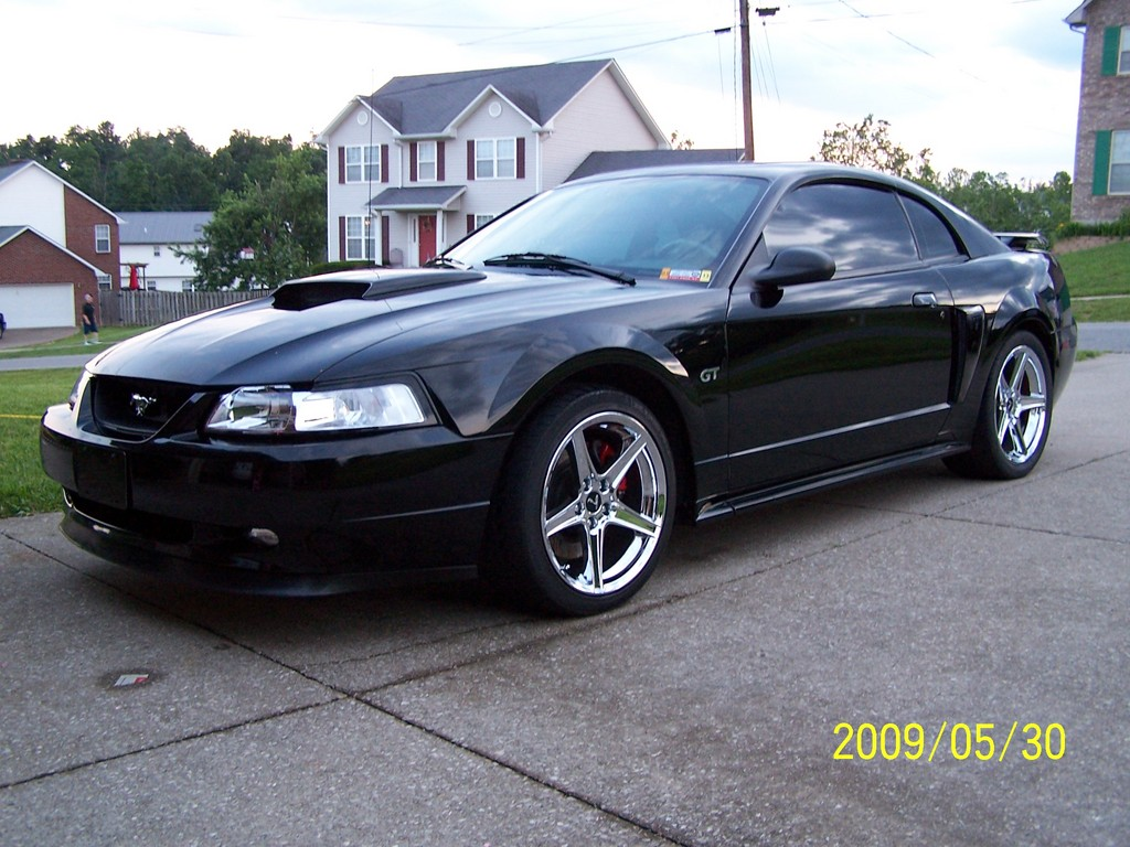 bobzstang 2001 ford mustang specs photos modification. Black Bedroom Furniture Sets. Home Design Ideas