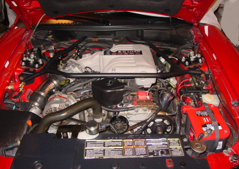 Bx50stang 1994 Ford Mustang Specs  Photos  Modification