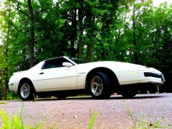 merceryboy84s 1988 Pontiac Firebird