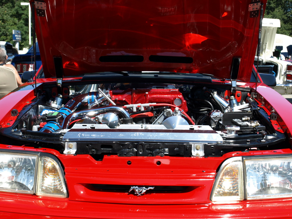 Another 89stang1 1989 Ford Mustang post... - 13824421