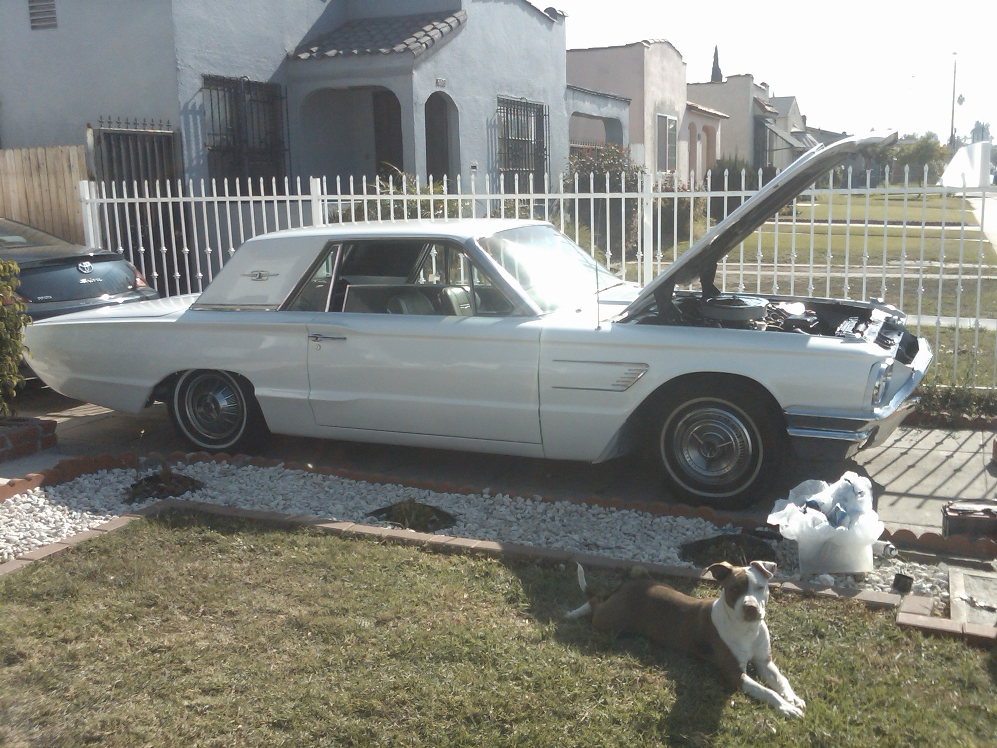 Another RogerAllDay 1965 Ford Thunderbird post... - 13824946