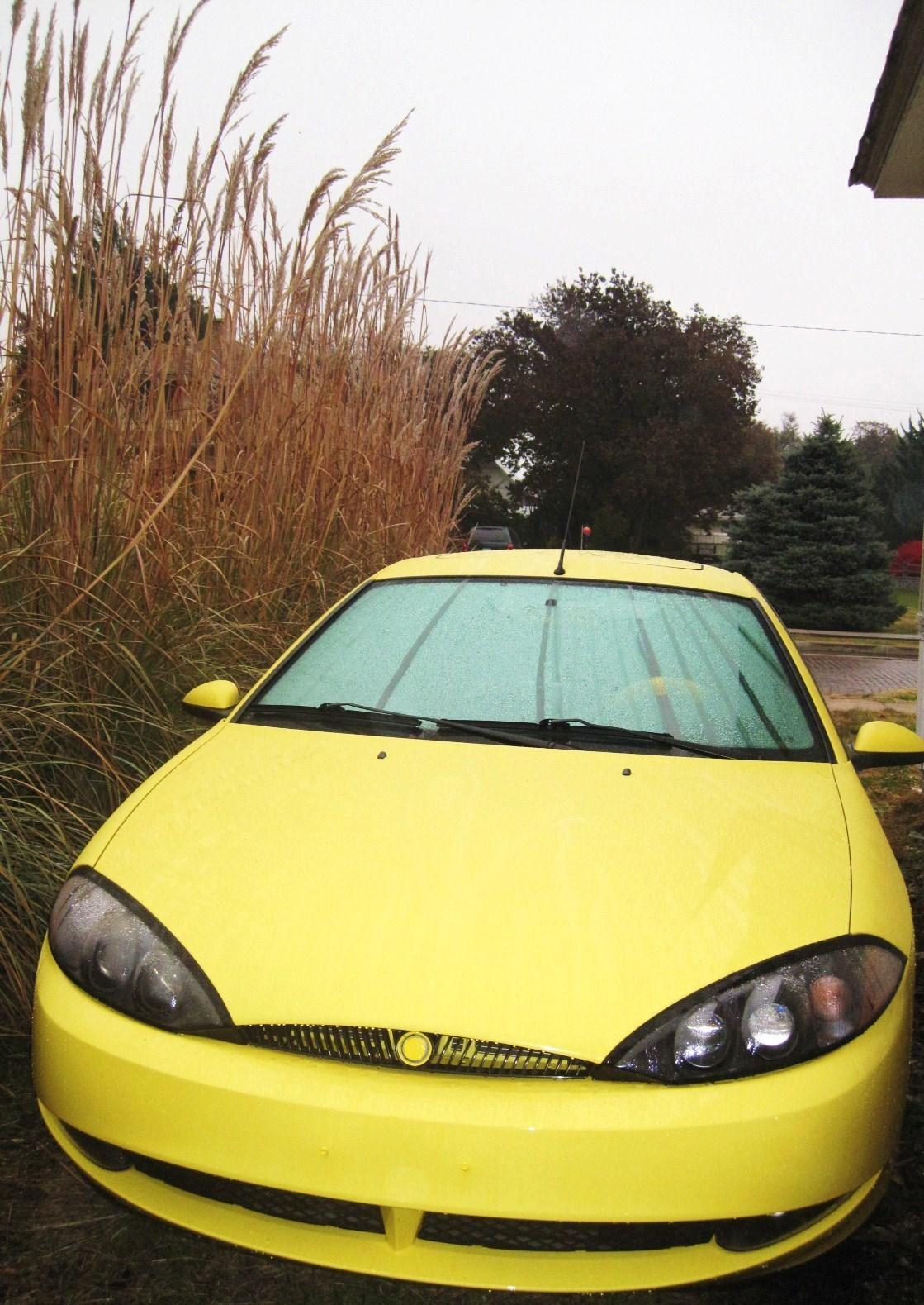 Another yellowbreezy 2000 Mercury Cougar post... - 13825553